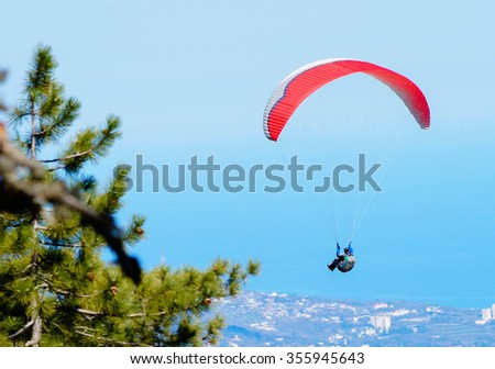 skydiver, gliding over the forest - stock photo