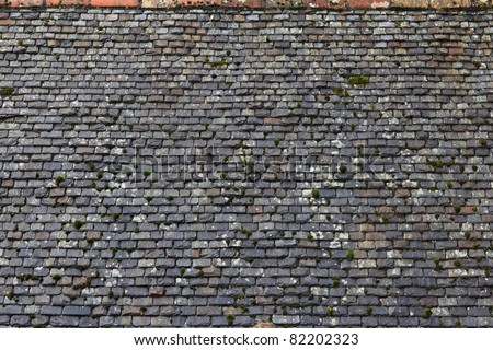 Slate Shingle - stock photo