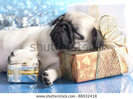 sleeping  puppy pug and gifts christmas - stock photo