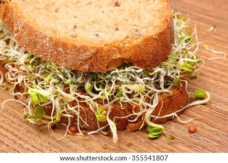 Slice of fresh baked wholemeal bread with alfalfa and radish sprouts on wooden surface, concept of healthy lifestyle diet food and nutrition - stock photo