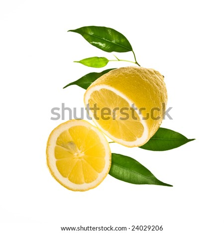 Slice of lemon with leaves isolated on a white background - stock photo