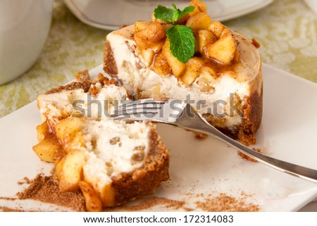 Slice of vanilla cheesecake decorated with apple topping - stock photo
