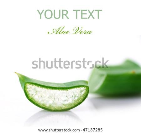Sliced Aloe Vera - stock photo
