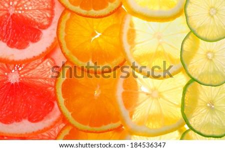Sliced citrus fruits background (grapefruit, orange, lemon, lime) - stock photo