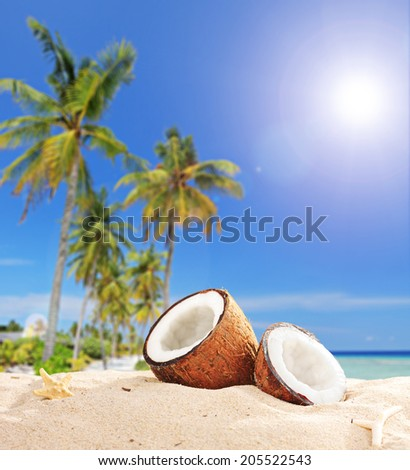 Sliced coconut on a tropical beach by the ocean shot with tilt and shift lens - stock photo