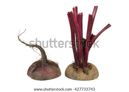 Slices of Beetroot on White Background - stock photo