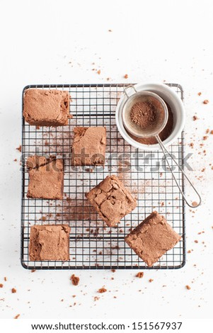 Slices of delicious homemade chocolate brownies sifted with cocoa powder, arranged on wire cooling rack. Taken on a white background, directly from above. - stock photo