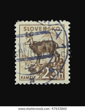 SLOVAKIA - CIRCA 1943: A stamp printed in Slovakia showing chamois circa 1943 - stock photo