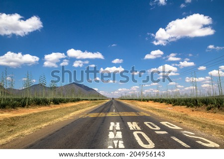 Slow Down markings on straight road in Tanzania - stock photo