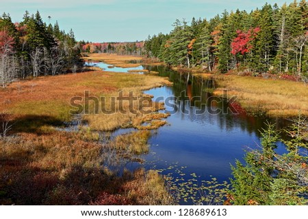 Slow moving river through an evergreen forest in fall. - stock photo