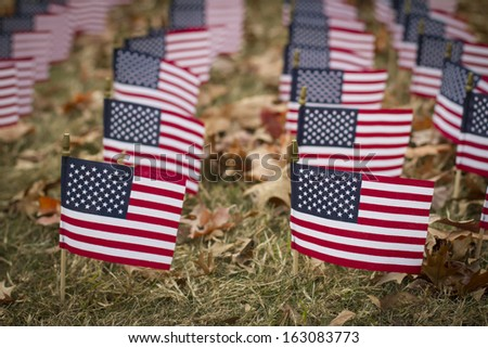 Small American flags lined up on a lawn. - stock photo