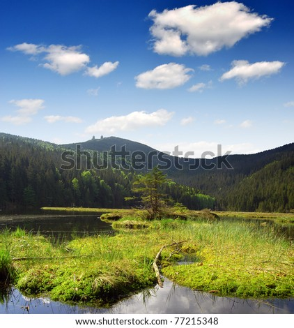 Small Arber Lake in National Park Bavarian Forest - Germany - stock photo