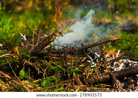 Small campfire on green meadow in forest - stock photo
