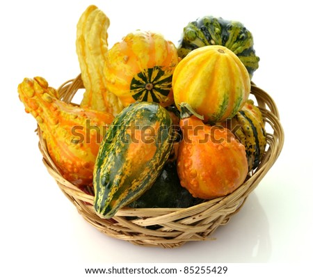 Small Colorful Gourds Collection In A Basket - stock photo