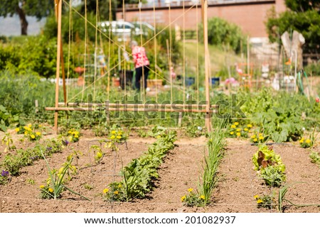 Community Garden Stock Photos Images Pictures
