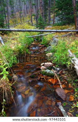 Small creek flowing through the Lewis and Clark National Forest of Montana - stock photo