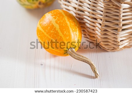 Small decorative pumpkin on a white background. Close up - stock photo