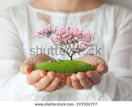 Small fantastic island with pink tree in women's hands. Sakura - stock photo