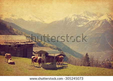 Small farm in Swiss alps.  Bodmen, Valais, Switzerland. Added paper texture   - stock photo