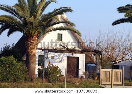 Small farmhouse typical of Valencia,La Albufera nature reserve, El Palmar, Valencia, Comunidad Valenciana, Spain. - stock photo