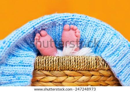 Small feet of newborn baby boy - stock photo