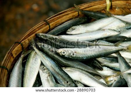 Small fish in wicker basket, Vietnam - stock photo
