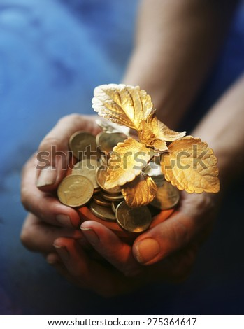 Small gold seedling growing in coins  in hands - stock photo