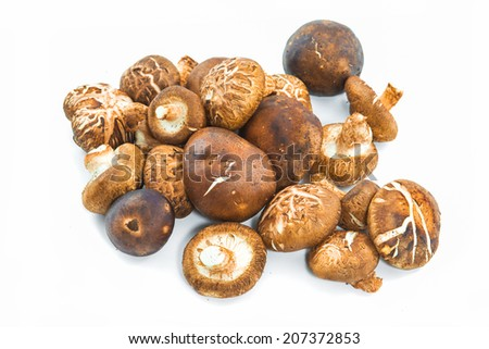 Small group of japanese mushrooms, isolated on white. Shiitake Mushroom isolated on white - stock photo