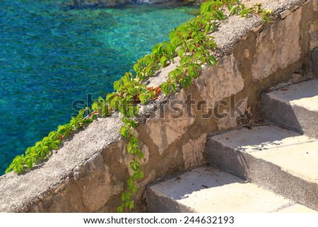 Small harbor surrounded by vivid vegetation near the Adriatic sea, Trsteno, Croatia - stock photo