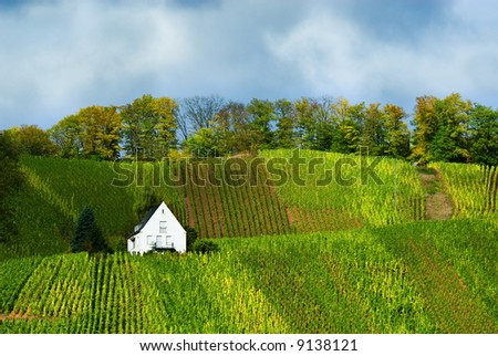 small house on the vineyards along the mosel river in germany - stock photo