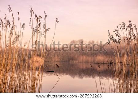 Small idyllic lake on a misty autumn morning - stock photo