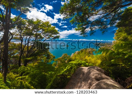 Small island view from jungle in Abel Tasman National Park - stock photo