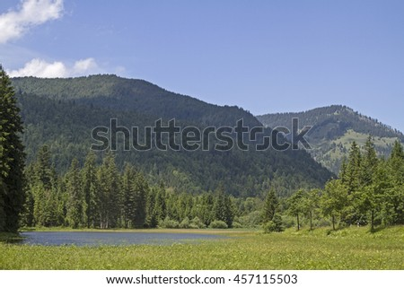 Small lake in Ursprungs valley south of Bayrischzell - stock photo