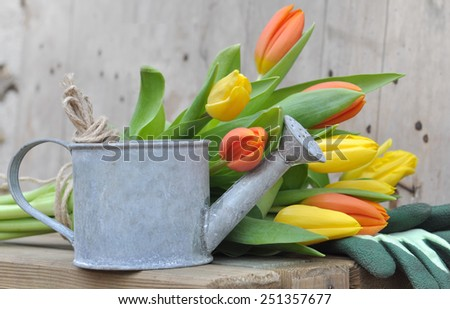 small metal watering can in front of a bouquet of tulips on wood background - stock photo