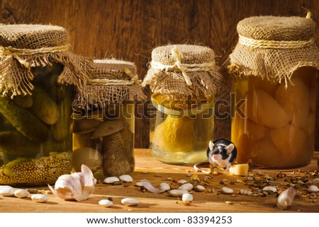 Small mouse living in basement with stockpile - stock photo