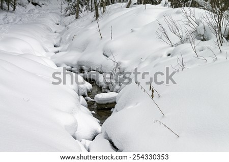 Small non-freezing creek in a winter forest. - stock photo