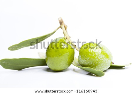 Small olive branch with green olives - stock photo