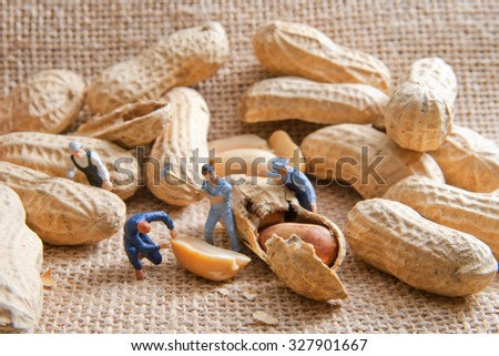 Small people split the peanuts. The concept of cooking. - stock photo