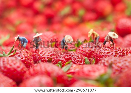 Small people, villagers gather crops. The concept of cooking. - stock photo