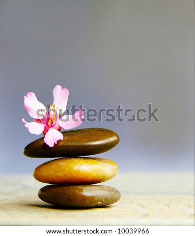 Small pink flower atop three stacked stones - stock photo
