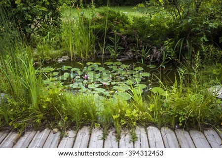 Small pond as part of landscaping with aquatic plants and water lilies surrounded by lush vegetation near wooden board walkway - stock photo