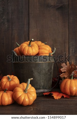 Small pumpkins in wooden bucket on table - stock photo