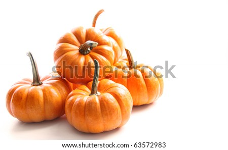 Small pumpkins on white on white - stock photo