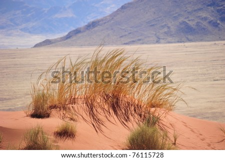 Small red sand dune with yellow grass - stock photo