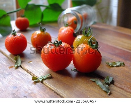 Small red tomatoes on wooden table. - stock photo