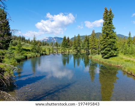 Small river clear water flow in Willmore Wilderness Park, Alberta, Canada, mountain nature habitat landscape - stock photo