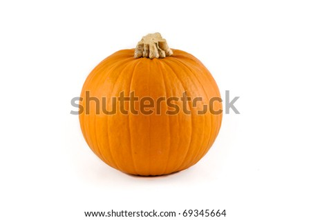 Small round pumpkin with a white background - stock photo