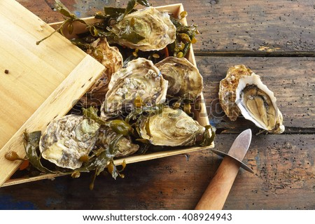 Small rustic wooden crate with lid full of fresh whole marine oysters in the shell with a shucking knife and one opened oyster on the outside, overhead view on rustic wood - stock photo
