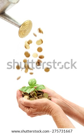 Small seedling growing and being watered by coins - stock photo