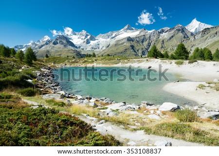 Small sheeps in the valley, Switzerland, Zermatt - stock photo